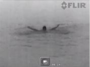 Imagen termográfica Ocean Scout TK